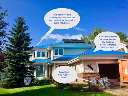 safe roofing repair replacement service in Edmonton